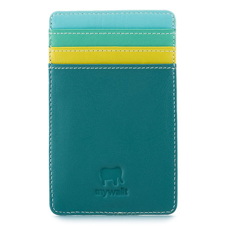 N/S Credit Card Holder-Mint