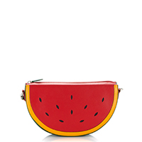 Fruits Watermelon Across Body-Red/Green